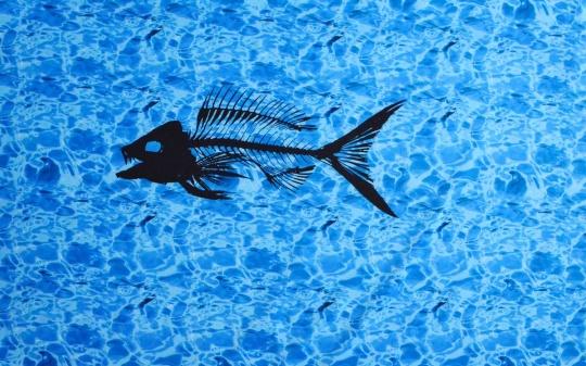 Badeware blau Wasser schwarze Fischgräte  Rapport!!